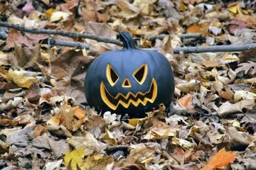 BlackPumpkin